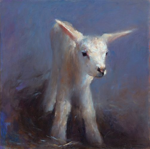 Lamb, oil / canvas, 2009, 50 x 50 cm cm, Sold