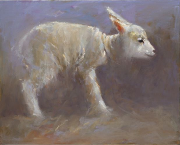 Lamb, oil / canvas, 2014, 40 x 50 cm, Sold