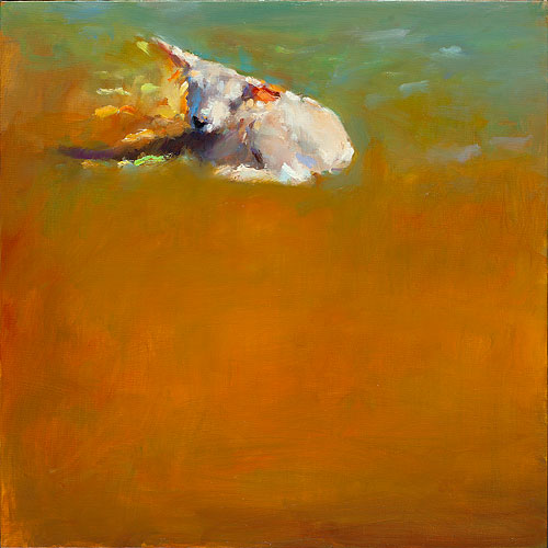 little lamb II, oil / canvas, 2014, 40 x 40 cm, Sold